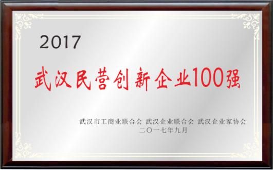 武漢民營創新企業100強
