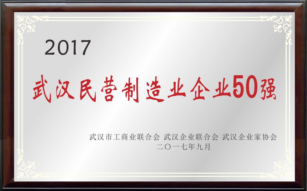 武漢民營制造業企業50強