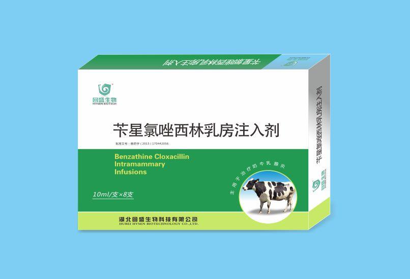 苄星氯唑西林乳房注入剂